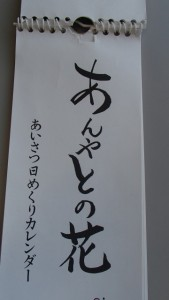 s_P8192183